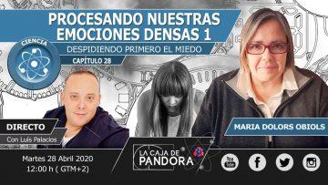 PROCESANDO NUESTRAS EMOCIONES DENSAS: DESPIDIENDO PRIMERO EL MIEDO. 1ª PARTE con María D. Obiols