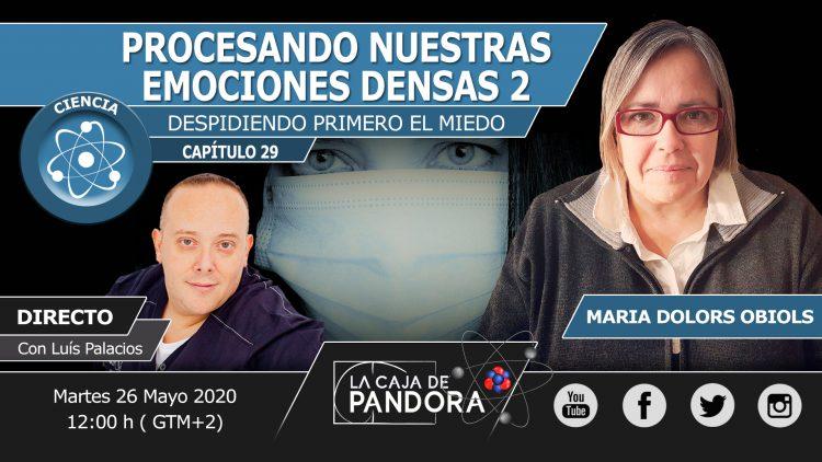 MARIO DOLORS OBIOL N29