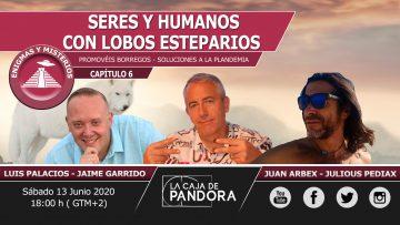JAIME GARRIDO 6