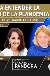 DESCIFRANDO LA MATRIX CAPITULO 91