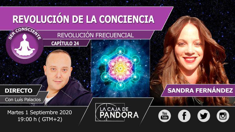 SANDRA 24