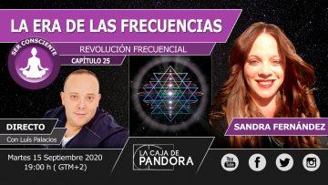 SANDRA 25