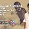 SANANDO AL NIÑO INTERIOR – MEDITACIÓN LA ABUNDANCIA – PARTE 1 de 3 con Endika Drame