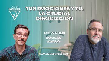 José Salmerón – TERAPIA FLORAL #01